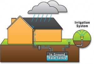 Rain-water-harvesting-system-300x204